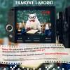 """""""Filmowe Laborki"""" – laboratorium wobiektywie"""